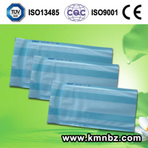 Medical Sterile Gusseted Bag Pouch