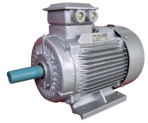 Ie2 (CE) Y2 Three Phase Electric Motor (Y2-160M-4(With PTC)) pictures & photos