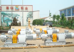 NYP Series Internal Gear Pump With Heating Jacket pictures & photos