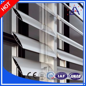 New Design Anodized Aluminum Windows Louver for Luxury Home (BR0001) pictures & photos