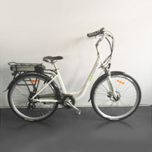 Customized City Electric Bike with Walking Mode Display pictures & photos