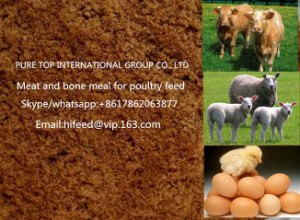 Quality Meat Meal Bone Meal for Chicken Feed with 50% 55% Protein Mbm pictures & photos
