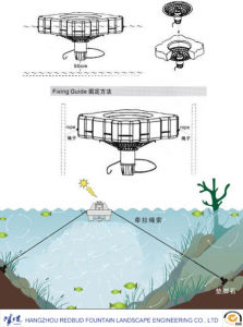 Music Water Pool Fountain and Floating Aerobic Fountain pictures & photos