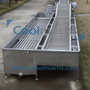 Chiller Water Cooling System for Vegetable and Fruit pictures & photos