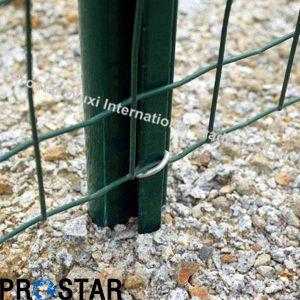 Popular High Quality Euro Fences for European Market pictures & photos