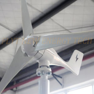 300W 12V/24V Wind Turbine Generator pictures & photos