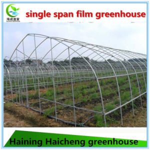 High Quality Agriculture Film Commercial Greenhouse for Sale pictures & photos