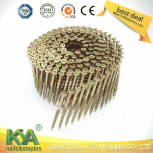15 Degree Square Head Nail Collated Screw pictures & photos