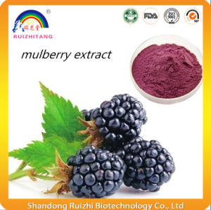 Mulberry Fruit Extract pictures & photos