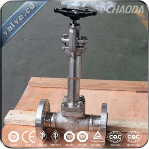 API602 NPT/Sw/Flanged Forged Steel Cryogenic Globe Valve pictures & photos