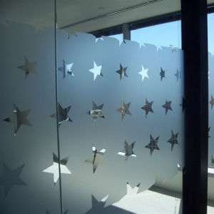 Customized Any Size Best Quality Decorative Graphics Window Film pictures & photos