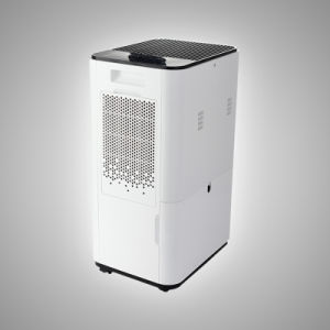 Humidity Removal Room Dehumidifier Home Depot for Damp pictures & photos