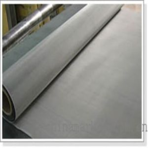 Stainless Steel Wire Mesh Netting Corrosion Protection pictures & photos