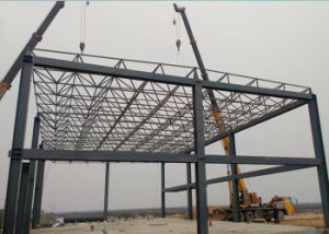 Steel Struture Grid for Large Span Building and Steel Workshop pictures & photos