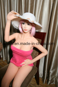 Agent Wanted Ce Certification 160cm Silicone Real Life Doll pictures & photos