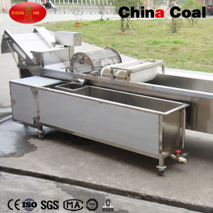 Ozone Disinfection Fruit Vegetable Washing Machine pictures & photos