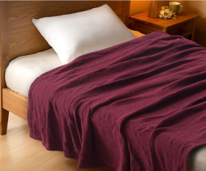 High-Quality 100% Cotton Colored Hotel Blanket pictures & photos