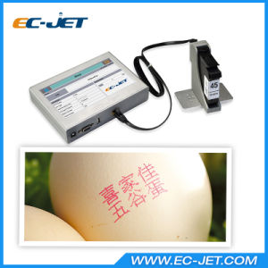 Best Price Production Barcode Inkjet Printer for Carton Printing (ECH700) pictures & photos