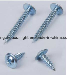 Wafer Head/Truss Head Self Tapping Screw pictures & photos