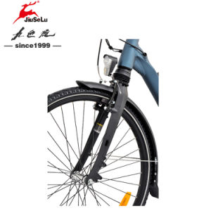 5 PAS LCD Display Aluminum Alloy Frame 700C Electric Bikes pictures & photos