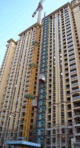Building Crane Hoist Equipment Construction Machinery pictures & photos
