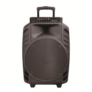 Portable 15 Inch Rechargeable Big Power Portable Bluetooth Speaker with Trolley---Qx15-08 pictures & photos