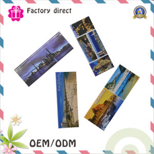 OEM Souvenir Fridge Magnet/Fridge Magnet/Custom Fridge Magnet pictures & photos