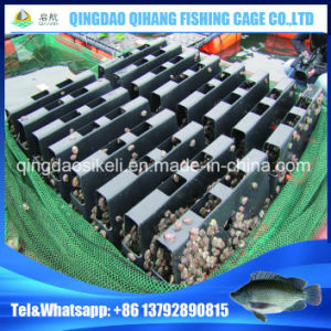 Neritic HDPE Abalone Farming Cage Abalone Cage pictures & photos