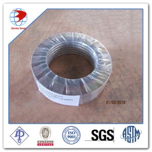 Large Size 16inch 150# ASME B16.2 T3 PTFE Gasket pictures & photos