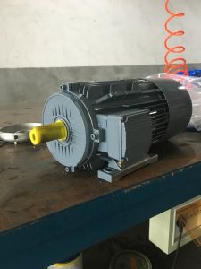 Brake Motor - Cast Iron - Standard Efficiency - S1 pictures & photos