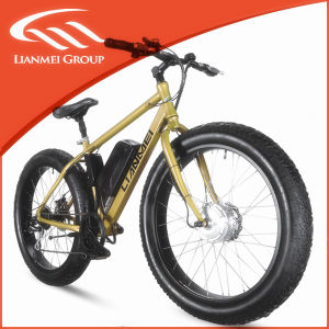 Nice Price Fat Electric Bike Lmtdf-27L with Ce pictures & photos