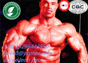Sex Enhancer Raw Powder Steroids Jinyangalkali CAS: 171596-29-5 pictures & photos