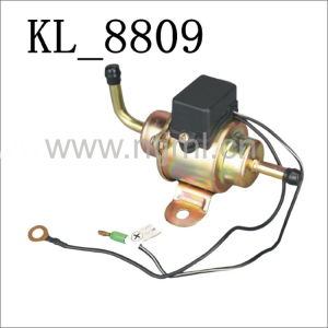 Electric Fuel Pump for Mazda (EP-503-00453-13-350) with Kl-8809 pictures & photos