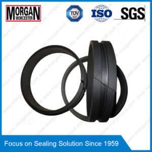 Fai Series Bearing Ring/Hydraulic Cylinder Rod Guide Ring Seal pictures & photos