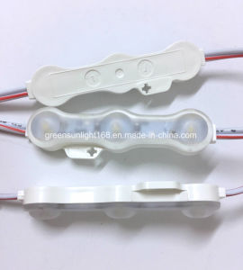 Big Order SMD 3030 LED Module Importer pictures & photos