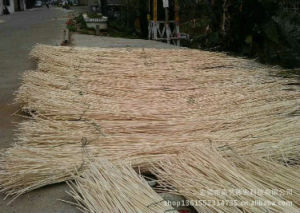 Rattan Diffuser Aroma Reed Stick pictures & photos
