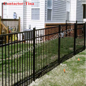 Heavy Steel Palisade Fence/Ornamental Wrought Iron Fence (XM3-22) pictures & photos