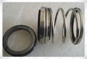 Elastomer Below Mechanical Seal as-E21 Replace Johncrane Type 21 Seal pictures & photos