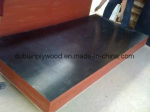 4 8 FT Film Face Plywood / Marine Plywood/ Plywood/Construction Plywood pictures & photos