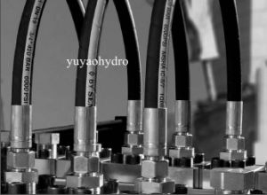 Hydraulic Hose Assemblies with Bsp Jic Hydraulic Crimped Fittings pictures & photos