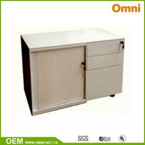 Steel Roller Shutter Door Cabinet (OMNI-XT-05) pictures & photos