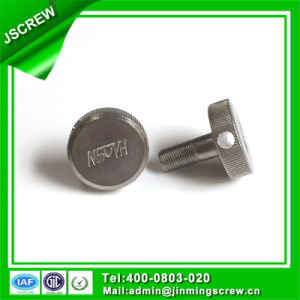 Stainless Steel Binding Post Screw pictures & photos