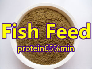 Powder Fish Feed From Fish Meal Protein 55% 65% 72% pictures & photos