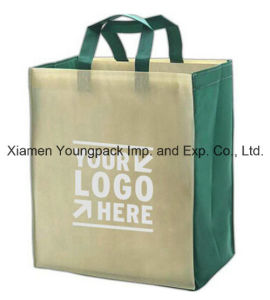Personalized Custom Printing Recyclable Tote Shopping Bag for Grocery pictures & photos