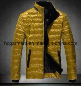 Fashion Ski Down Fleece Winter Jacket for Man, Outdoor Clothing pictures & photos