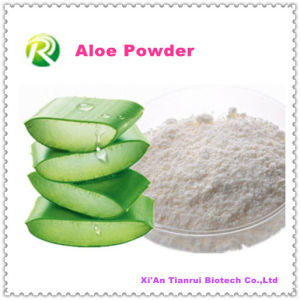 High Quality 100% Natural Aloe Extract Powder pictures & photos