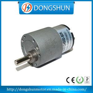 Ds-37RS520 24V 12V DC Gear Motor