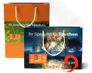 Promotional Paper Shopping Bags, Brown Kraft Paper Carrier Bag (HBPB-5) pictures & photos