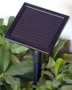 Glass PV Solar Panels with Battery and Controller Amorphous 15*13 pictures & photos