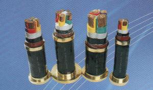 500mm2 Flexible PVC Power Cable pictures & photos